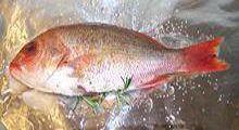 fishbake3