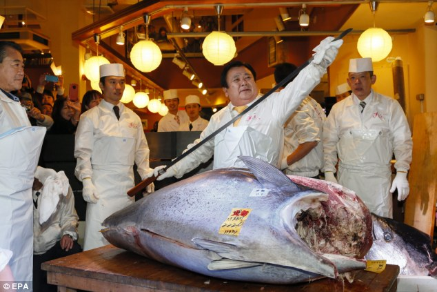 record-bluefin-tuna-2
