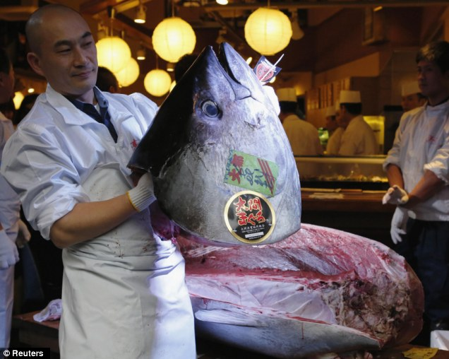 record-bluefin-tuna-4