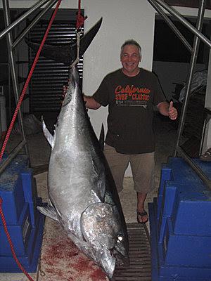 Big-eye-Tuna-4