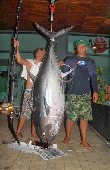 Big-eye-Tuna-6