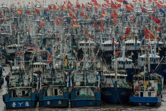 Tàu cá ở cảng Zhoushan